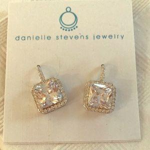 Danielle Stevens CZ Drop Earrings
